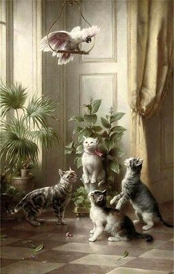 Dream-art Oil painting Carl Reichert Animals Cats and the cockatoo Parrot canvas