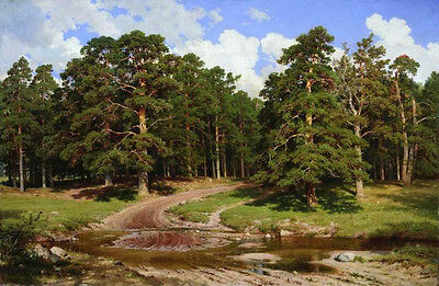 Oil painting Shishkin Ivan Ivanovich - pine forest landscape with brook canvas