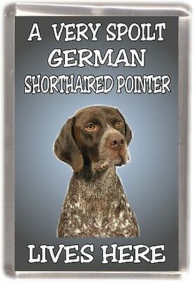 "German Shorthaired Pointer Fridge Magnet  ""A VERY SPOILT ........ "" by Starprint"