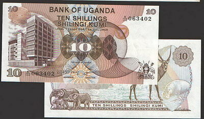 UGANDA ,  P11 , 11  10-Shilling   ND(1979)   UNC animal
