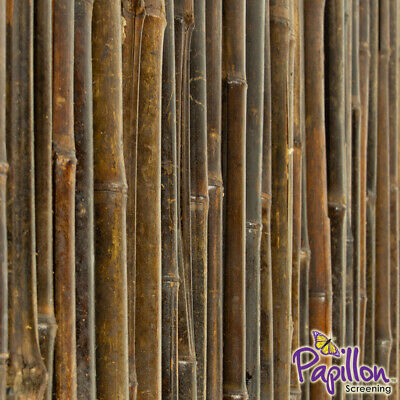 Thick Black Bamboo Cane Garden Screening Roll High Fencing Fence Screen 1.8m
