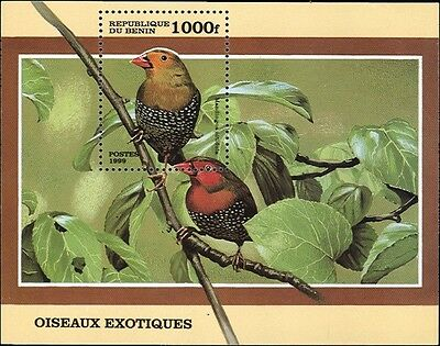 Birds On Souvenir Sheet From Benin # 1126 MNH