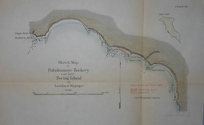 Seal Rookery Bering Island Alaska 1895 Map Hand Colored By L. Stejneger