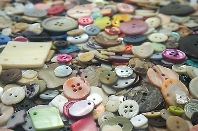 Assorted Shell Craft Buttons mixed Shape large small natural Sewing Beach 100g