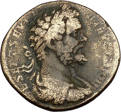 Septimius Severus 194AD Big Sestertius Authentic Ancient Roman Coin ROMA i41938