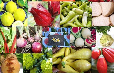 UNUSUAL MIXED SEEDS PACK 20 packets RARE UNIQUE vegetable garden collection odd