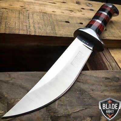 "10"" HUNTING STAINLESS STEEL WOOD HANDLE KNIFE Survival Skinning Bowie Camping"