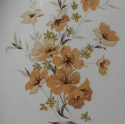 Mid Century 1950's Taylor Smith & Taylor Ever Yours Wild Rose Dinner Plate