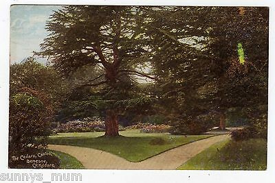 Ireland, County Kildare, Caxton, Demesne, The Cedars
