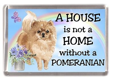 "Pomeranian (Black) Dog Fridge Magnet ""A HOUSE IS NOT A HOME"" by Starprint"