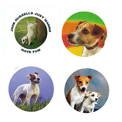 Jack Russell Magnets :4 Way-Cool Jrs for your Fridge or Collection-A Great Gift