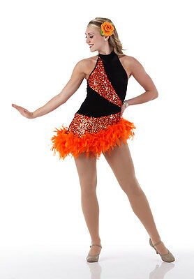 Ballroom Salsa Jazz Tap Dance Dress Costume Tango Halloween GROUPS Child & Adult
