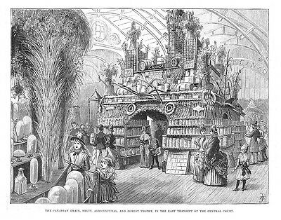 Canada Section at Colonial & Indian Exhibition in London - Antique Print 1886