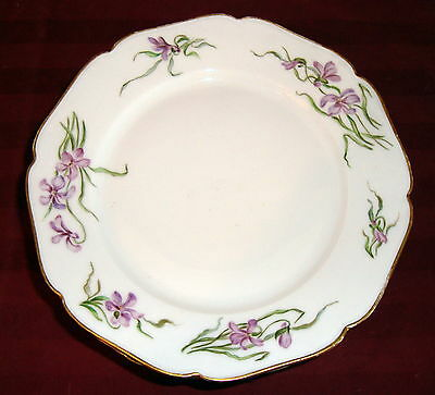"1888-1896  HAVILAND & CO 8-1/2"" Plate with IRIS FLOWERS and Gold Trim"