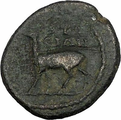 HADRIAN 117AD Ephesus in Ionia Stag Authentic Ancient Roman Coin i44309