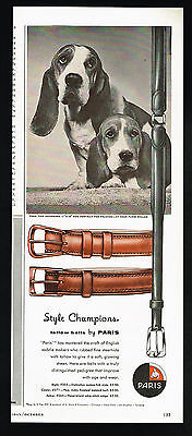 1957 Basset Hound Dog Portrait Print Mens Fashion Paris Belts Vintage Ad