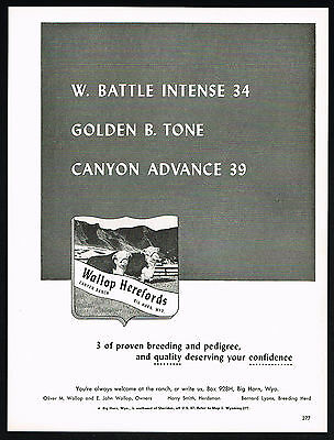 1959 Wallop Herefords Canyon Ranch Cow Cattle Wyoming Vintage Print Ad