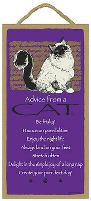 Advice From a CAT 10 x 5 Wood SIGN Plaque USA Made