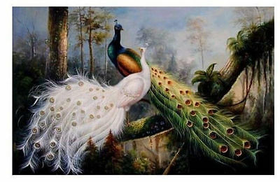 """MODERN CANVAS OIL PAINTING BEAUTIFUL PEACOCK """"beauty peacock""""(no framed)"""