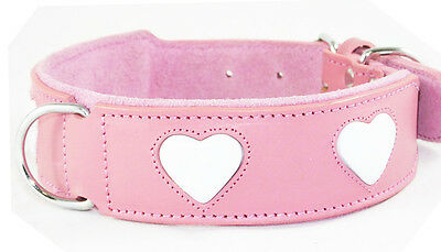 Pink Leather Dog Collar White Heart Staffy Staffordshire Bull Terrier Collar