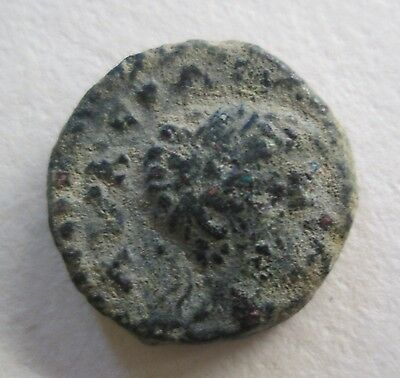 Roman Bronze City Coin Domitian Archaeology
