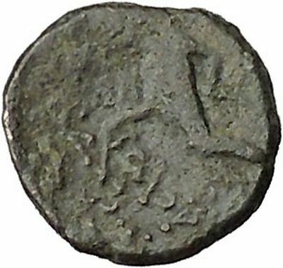 Antiochos III, the Great 223BC RARE Ancient Greek Coin Apollo Cult  i46043
