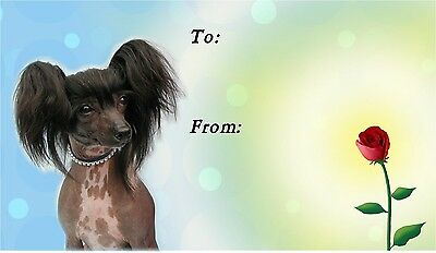 Chinese Crested Dog Self Adhesive Gift Labels design No. 2. by Starprint