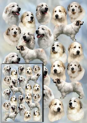 Pyrenean Mountain Dog Gift Wrapping Paper By Starprint