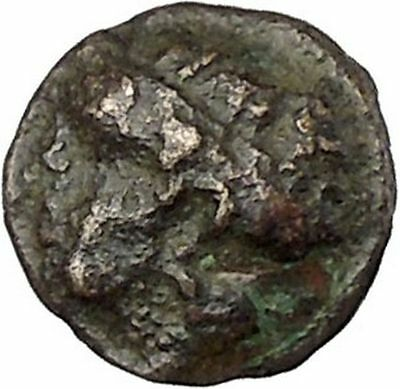 Phokaia in Ionia 350BC Nymph Griffin Authentic Ancient Greek Coin i45786
