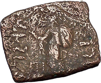 VONONID Dynasty Spalahores 85BC Indo Skythian Ancient India Greek Coin i47088