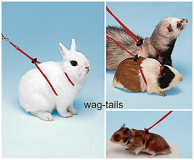 Ferplast Red Nylon Hamster Guinea Pig Rabbit Harness & Lead