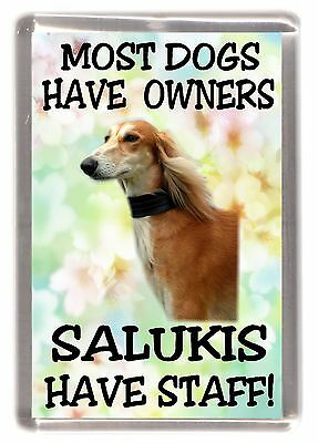 "Saluki Dog Fridge Magnet ""Most Dogs Have Owners Salukis Have Staff!"" - Starprint"