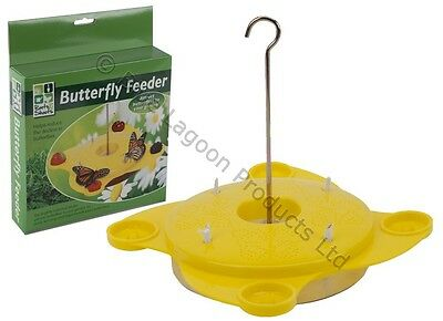 Yellow Butterfly Feeding Station Pollination Nature Garden Outdooor Feeder Food
