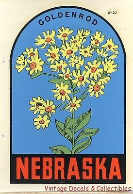Vintage Nebraska State Flower Goldenrod Souvenir Travel Decal Original Window
