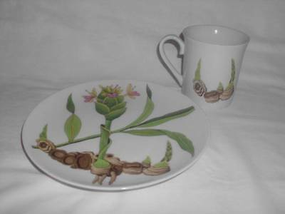 Horchow Japanese China-Cup & Salad Plate -Ginger Pattern Multi Color