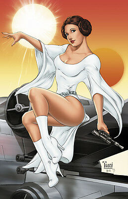 BEAUTIFUL STAR WARS Princess Leia signed Lithograph by Billy Tucci