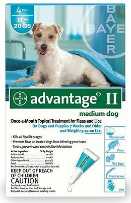 4 MONTH Advantage II Flea Control TEAL for Dogs 1120 lbs