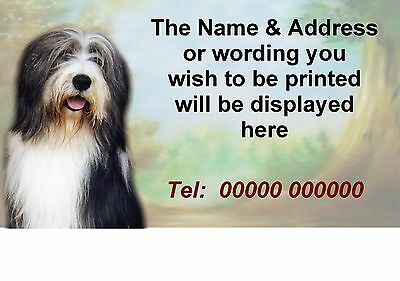 Bearded Collie Dog Personalised Address Labels designed by Starprint