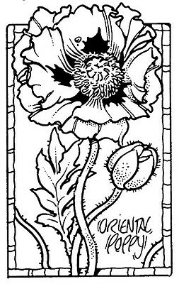 Unmounted Rubber Stamps, Floral Stamps, Oriental Poppies, Flower, Lg Poppy Frame