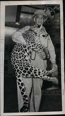 1950 Press Photo Miguel Roginsky with South American Jaguar