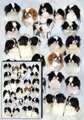 Japanese Chin Dog Gift Wrapping Paper By Starprint
