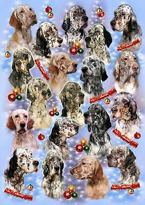 English Setter Dog Xmas Wrapping Paper By Starprint