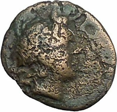 Kaunos in Caria 191BC Ancient Greek Coin Alexander the Great Cornucopia i49009