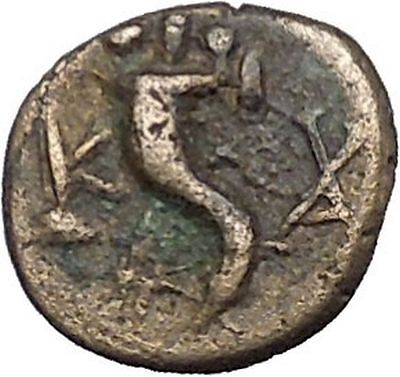 Kaunos in Caria 191BC Ancient Greek Coin Alexander the Great Cornucopia i49018