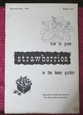 Booklet How to Grow Strawberries in the Home Garden 1959