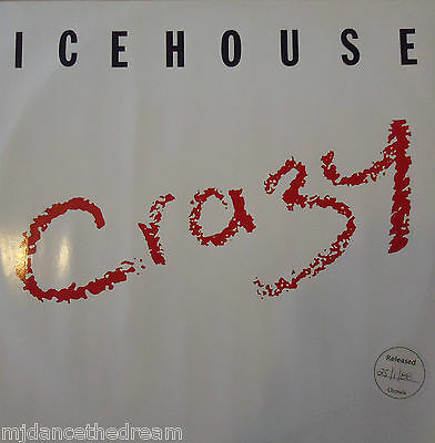 """ICEHOUSE - Crazy ~ 12"""" Single PS"""