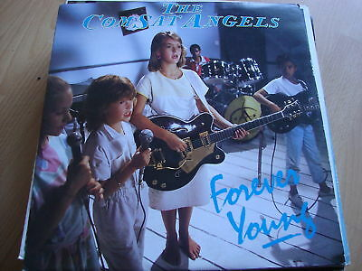 "The Comsat Angels Forever Young (PS) 12"" Vinyl"