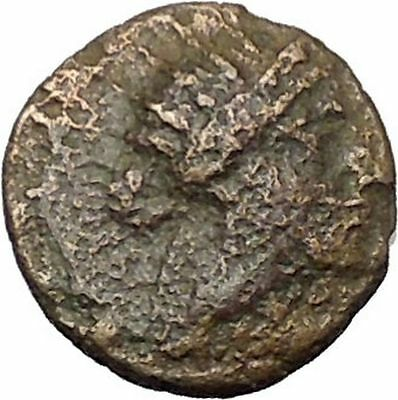 RHODES Island Off CARIA 394BC Nymph Rhodos ROSE Ancient Greek Coin i49615