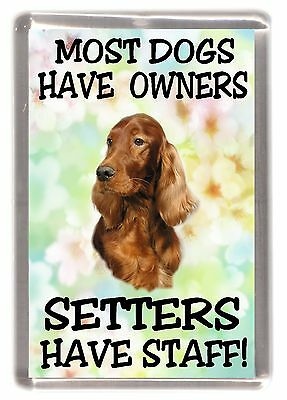 """Irish Setter Dog Fridge Magnet """"Most Dogs Have Owners Setters Have Staff"""""""