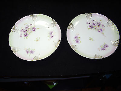 Set of 2 C T Carl Tielsch hand painted  porcelain plates made in Germany